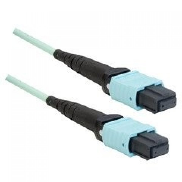 Enconnex 40G MTP (Female) to MTP (Female) - Trunk Cable - 2 Meter